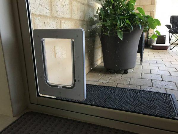 medium dog door