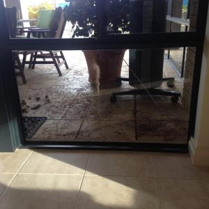dog doors access in Perth