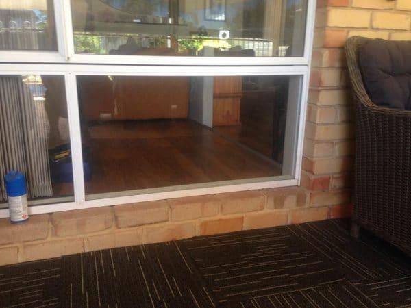 pet glass door entry