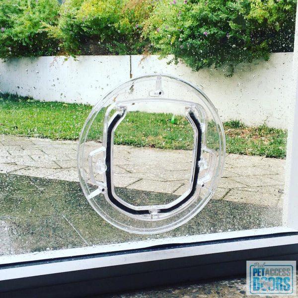 Cat door with custom glass