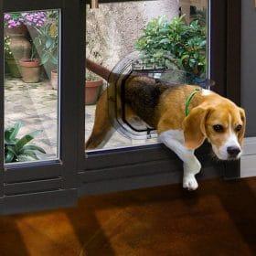 pet door round