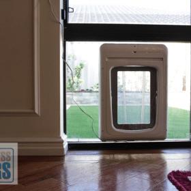 dog pet access door